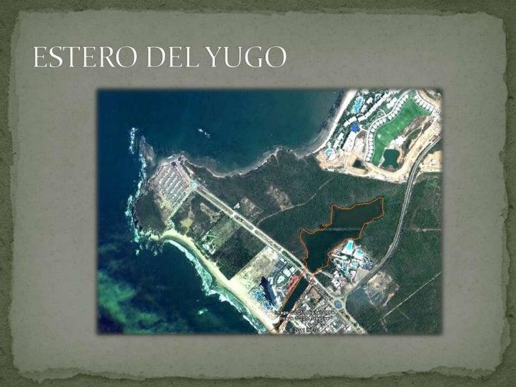 ESTERO DEL YUGO<br />