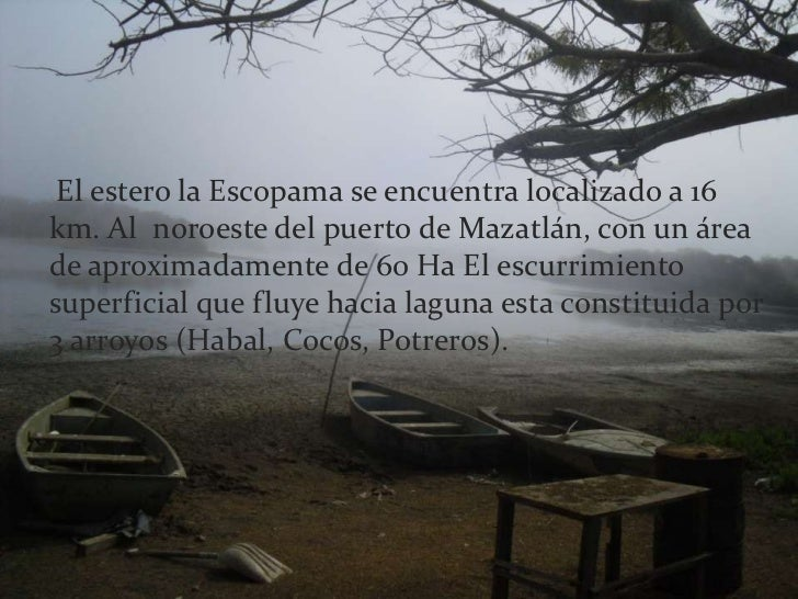 El estero la Escopama se encuentra localizado a 16 km. Al  noroeste del puerto de Mazatlán, con un área de aproximadament...