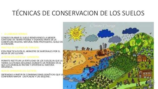 Problemas ambientales y desastres naturales for 5 cuidados del suelo