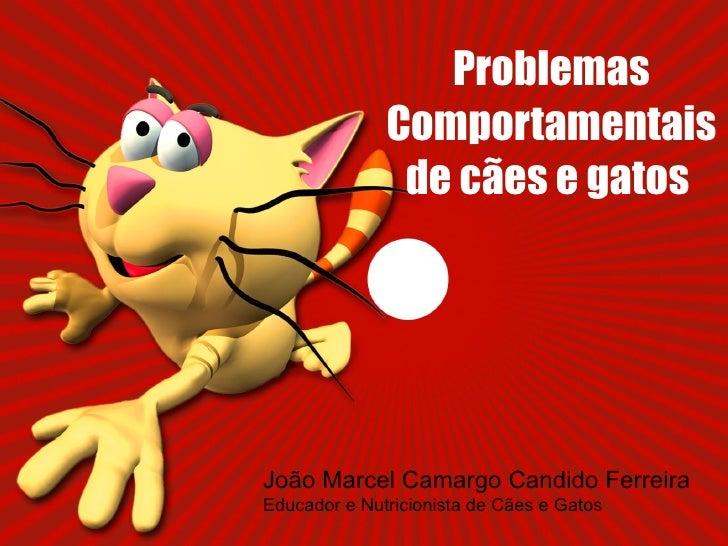Problemas Comportamentais de cães e gatos  João Marcel Camargo Candido Ferreira  Educador e Nutricionista de Cães e Gatos
