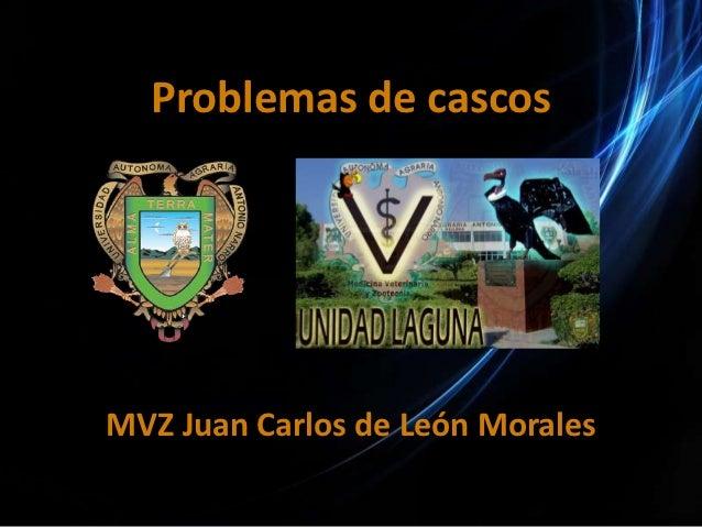 Problemas de cascosMVZ Juan Carlos de León Morales