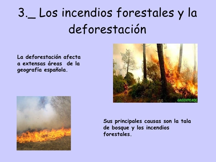 3._ Los incendios forestales y la deforestación La deforestación afecta a extensas áreas  de la geografía española. Sus pr...