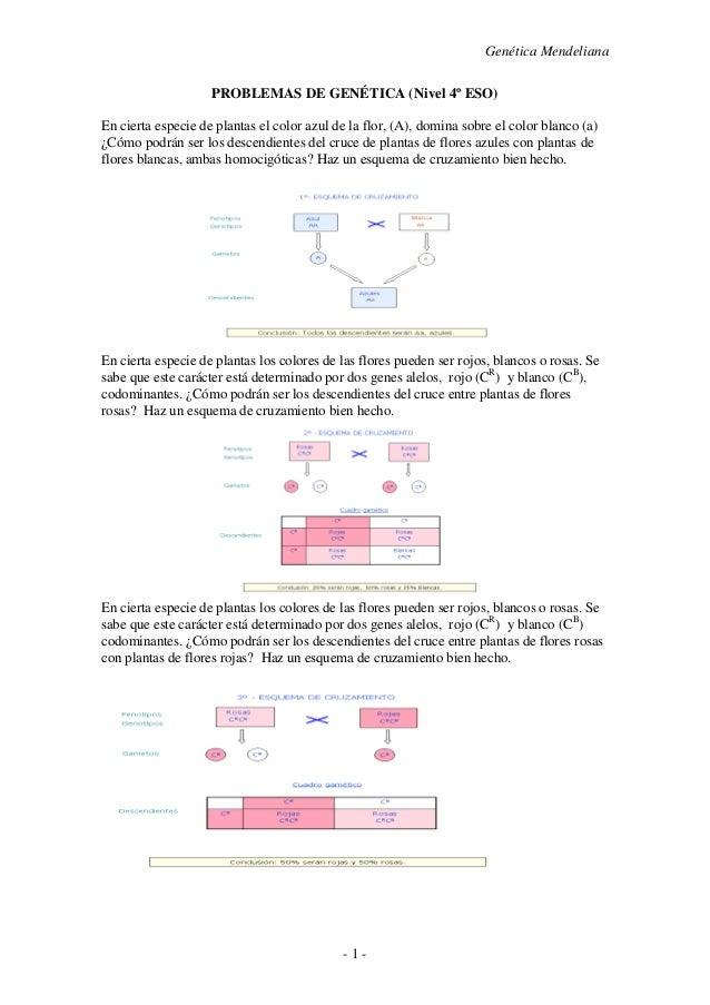 Genética Mendeliana - 1 - PROBLEMAS DE GENÉTICA (Nivel 4º ESO) En cierta especie de plantas el color azul de la flor, (A),...