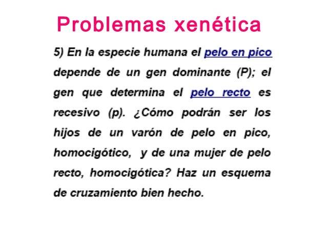 Problemas xenética