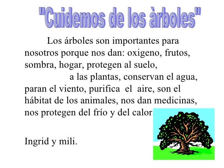 Problemas y soluciones1 for Porque son importantes los arboles wikipedia