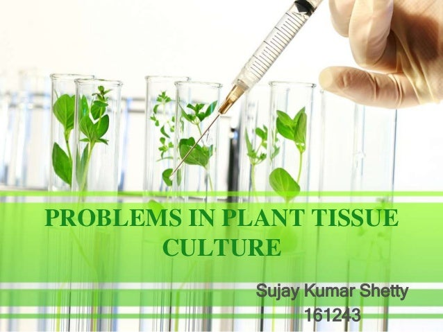 PROBLEMS IN PLANT TISSUE CULTURE Sujay Kumar Shetty 161243