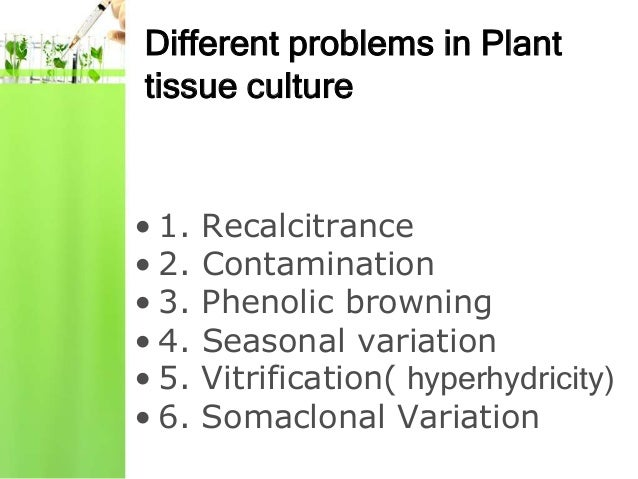 Problems in plant tissue culture Slide 2