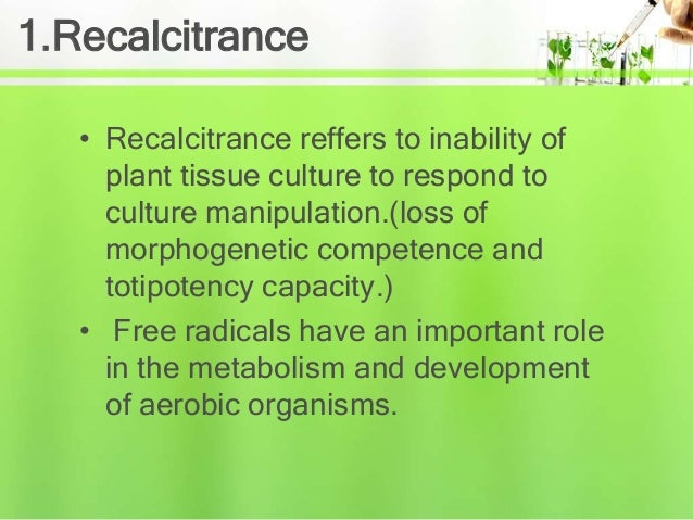 Problems in plant tissue culture Slide 3