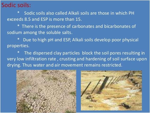 Problem soil management for Soil management