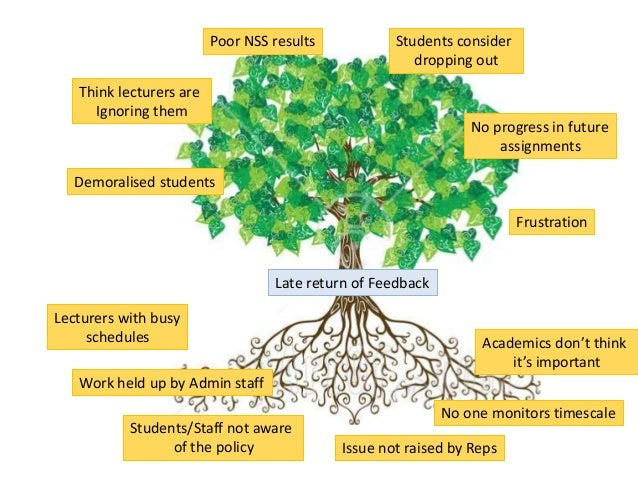 problem tree Visual guide to diseases of and environmental problems of trees in  top 10 disease and environmental problems of  less of a problem to the health of the tree.