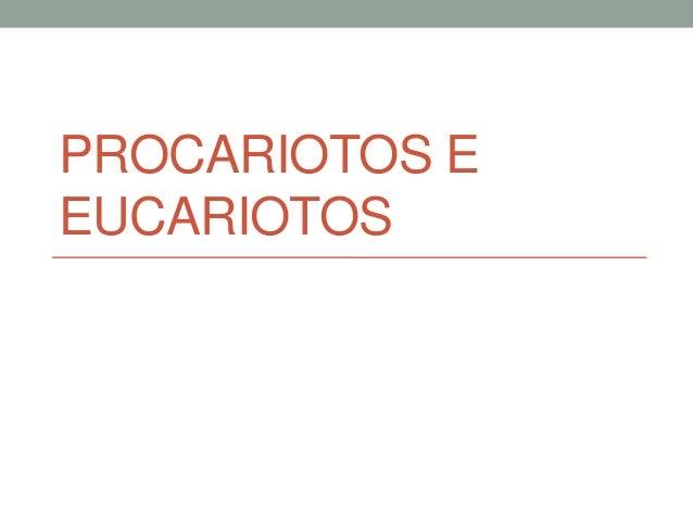 PROCARIOTOS EEUCARIOTOS