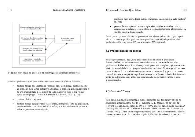 Técnicas de Análise Qualitativa102 Figura 17: Modelo do processo da construção de sistemas descritivos famílias puderam se...
