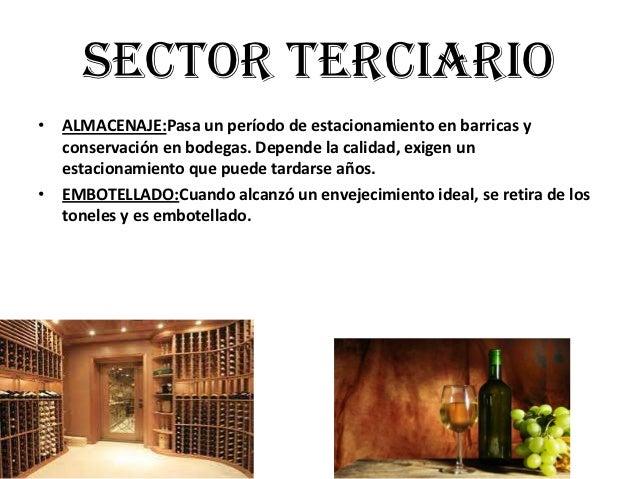 Circuito Productivo Del Vino : Circuito productivo de la uva técnica