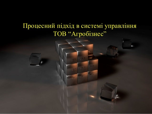 """Процесний підхід в системі управлінняПроцесний підхід в системі управління ТОВ """"Агробізнес""""ТОВ """"Агробізнес"""""""