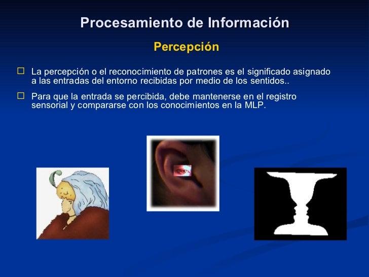 Procesamiento de Información Percepción <ul><li>La percepción o el reconocimiento de patrones es el significado asignado a...