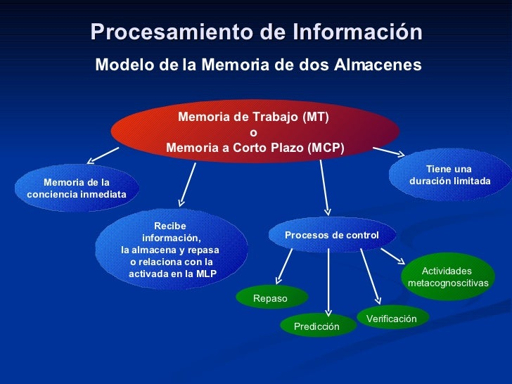 Procesamiento de Información Modelo de la Memoria de dos Almacenes Memoria de Trabajo (MT)  o  Memoria a Corto Plazo (MCP)...