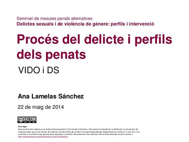 VIDO i DS Procés del delicte i perfils dels penats Ana Lamelas Sánchez 22 de maig de 2014 Seminari de mesures penals alter...
