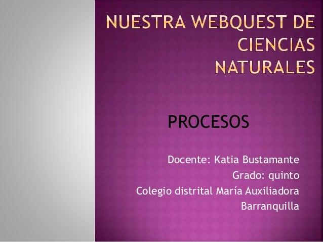 Docente: Katia Bustamante Grado: quinto Colegio distrital María Auxiliadora Barranquilla PROCESOS