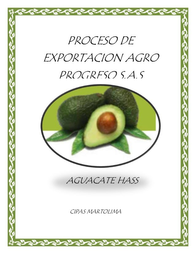 PROCESO DE EXPORTACION AGRO PROGRESO S.A.S AGUACATE HASS CIPAS MARTOLIMA