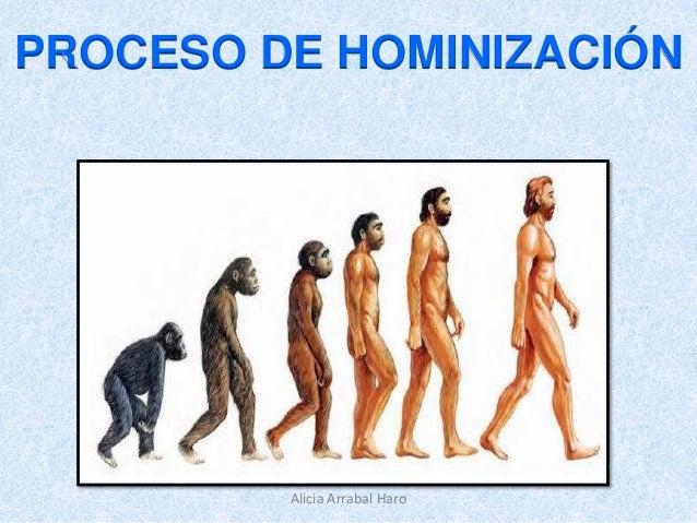 PROCESO DE HOMINIZACIÓN  Alicia Arrabal Haro