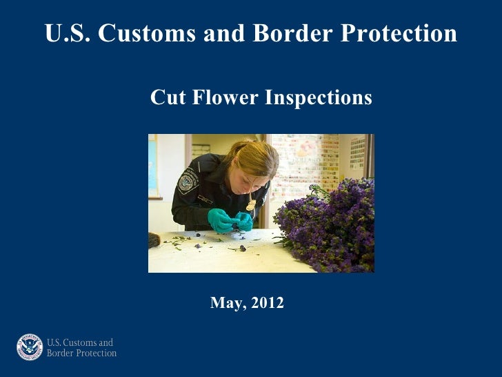 U.S. Customs and Border Protection        Cut Flower Inspections             May, 2012