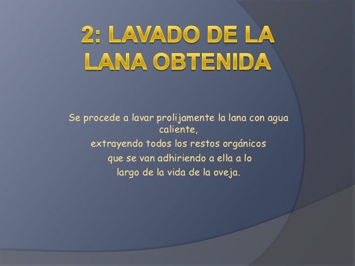 Circuito Productivo De La Lana : Proceso de la lana