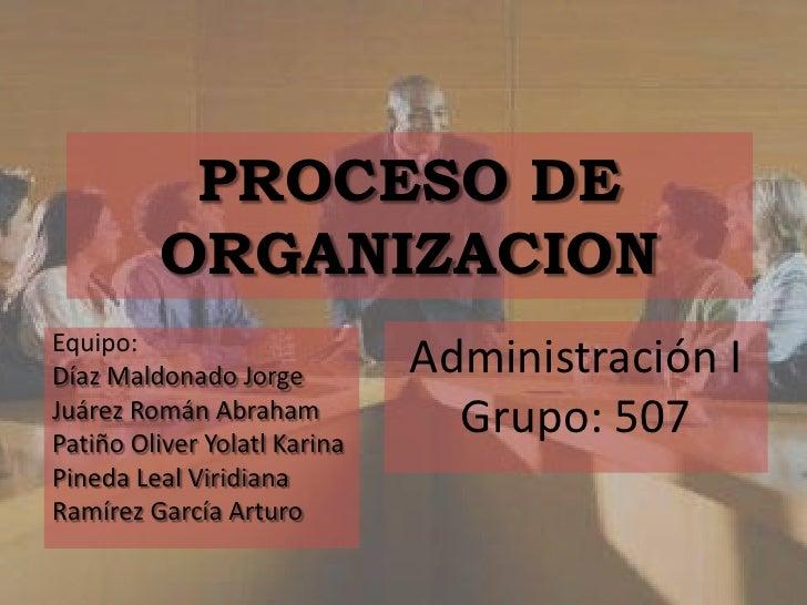 Proceso de organizacion