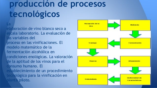 Proceso de produccion del vino 1 for Descripcion del proceso de produccion