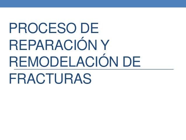 PROCESO DE REPARACIÓN Y REMODELACIÓN DE FRACTURAS