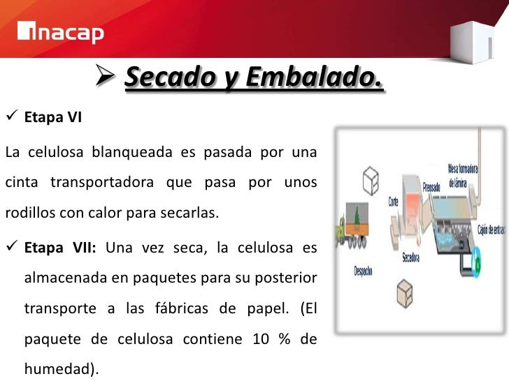 Proceso productivo del papel for Descripcion del proceso de produccion