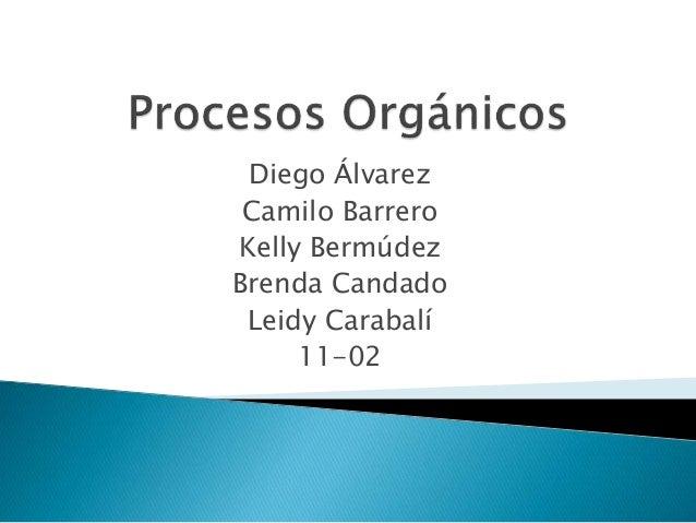 Diego Álvarez Camilo Barrero Kelly Bermúdez Brenda Candado Leidy Carabalí 11-02