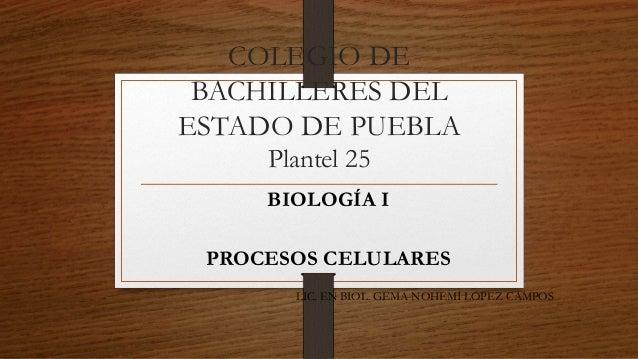 COLEGIO DE  BACHILLERES DEL  ESTADO DE PUEBLA  Plantel 25  BIOLOGÍA I  PROCESOS CELULARES  LIC. EN BIOL. GEMA NOHEMÍ LÓPEZ...