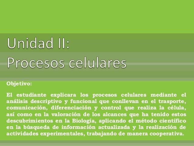 Objetivo: El estudiante explicara los procesos celulares mediante el análisis descriptivo y funcional que conllevan en el ...