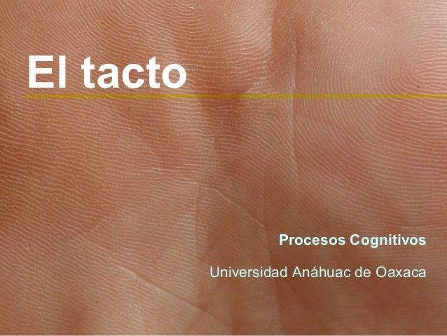El tacto                    Procesos Cognitivos           Universidad Anáhuac de Oaxaca