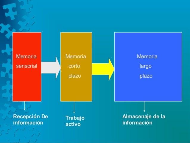 Memoria sensorial Memoria corto plazo Memoria largo plazo Recepción De información Trabajo activo Almacenaje de la informa...