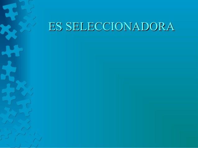 ES SELECCIONADORAES SELECCIONADORA