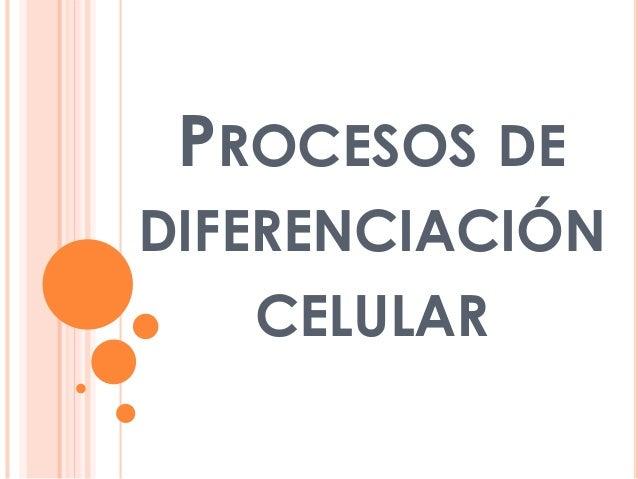 Procesos de diferenciación celular
