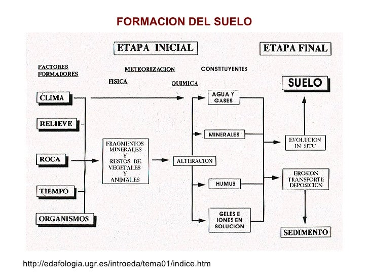 Procesos de formacion for Proceso de formacion del suelo
