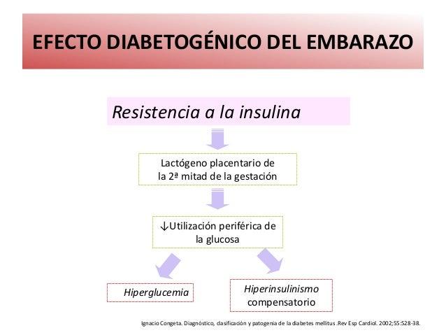 Procesos endocrinologicos y metabolicos durante embarazo