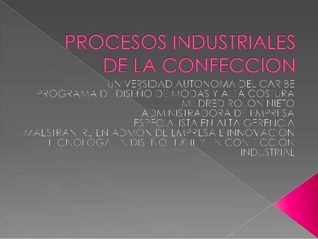 Cada actividad industrial se estructura con base a las características tecnológicas del producto y de la producción, de in...