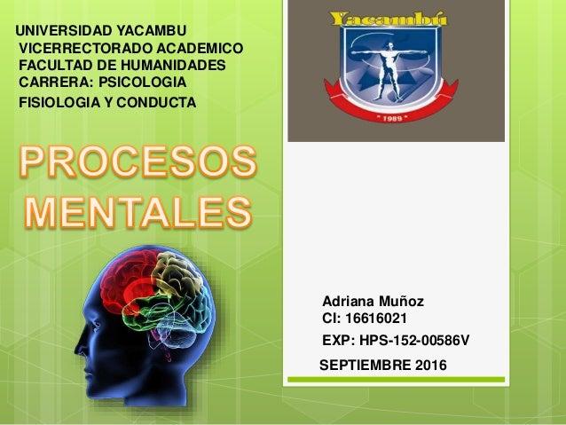 UNIVERSIDAD YACAMBU VICERRECTORADO ACADEMICO FACULTAD DE HUMANIDADES CARRERA: PSICOLOGIA Adriana Muñoz CI: 16616021 EXP: H...