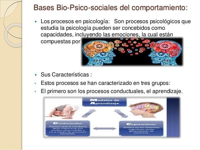 Procesos psicologicos Slide 2