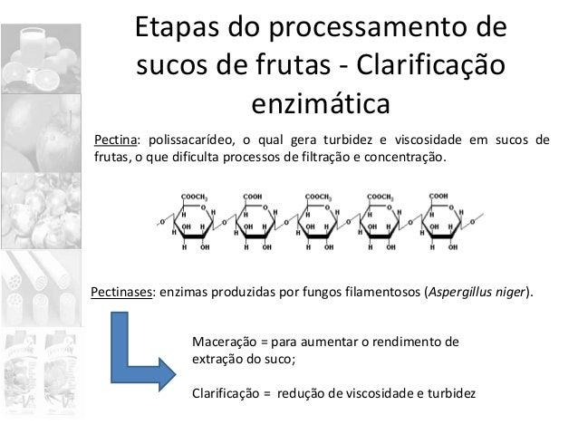 Etapas do processamento de sucos de frutas - Clarificação enzimática Pectina: polissacarídeo, o qual gera turbidez e visco...