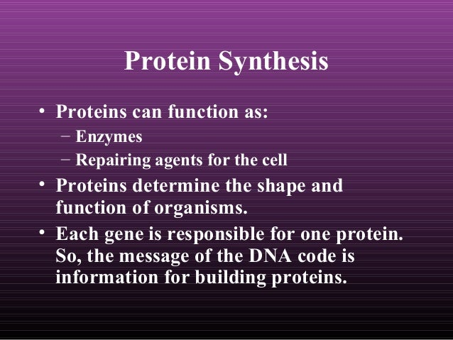 protein systhesis Protein synthesis is a complex, multi-step process involving many enzymes as well as conformational alignment however, the majority of antibiotics that block bacterial protein synthesis interfere with the processes at the 30s subunit or 50s subunit of the 70s bacterial ribosome the aminoacyltrna synthetases that activate.