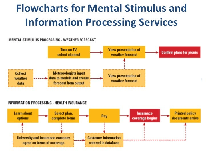 mental stimulus processing In this overview of perception and the perceptual process, we will learn  the  environmental stimulus is everything in our environment that has the  the  primary process involves creating a mental image of a desired object.