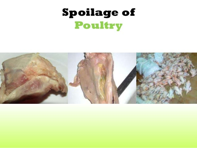 Poultry Contamination Preservation And Spoilage