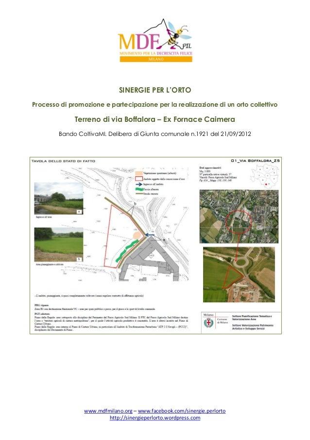 SINERGIE PER L'ORTO Processo di promozione e partecipazione per la realizzazione di un orto collettivo  Terreno di via Bof...