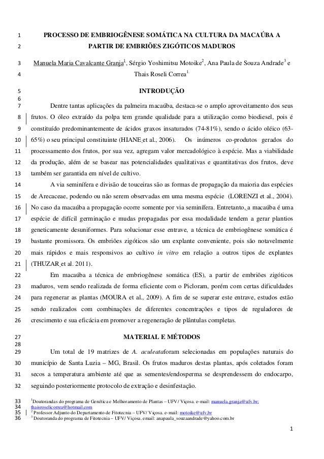 PROCESSO DE EMBRIOGÊNESE SOMÁTICA NA CULTURA DA MACAÚBA A 1 PARTIR DE EMBRIÕES ZIGÓTICOS MADUROS 2  Manuela Maria Cavalcan...