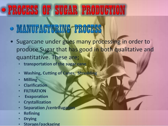 Sugar manufacturing process from sugarcane ppt.
