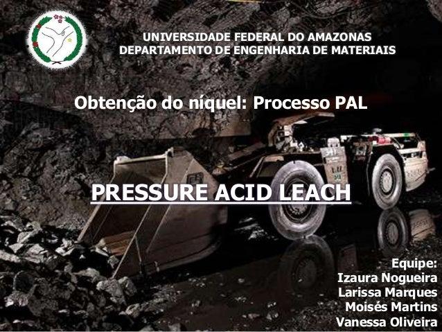 UNIVERSIDADE FEDERAL DO AMAZONAS DEPARTAMENTO DE ENGENHARIA DE MATERIAIS  Obtenção do níquel: Processo PAL  PRESSURE ACID ...